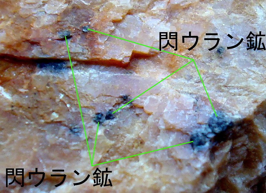 閃ウラン鉱 代表的な放射性鉱物の例 鉱 物種 含 まれる主な放射性元素 閃 ウラン鉱 ウラン サ