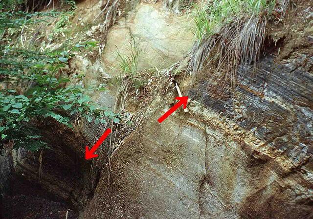 断層 断層 〔戻る〕 岩石が強い地殻